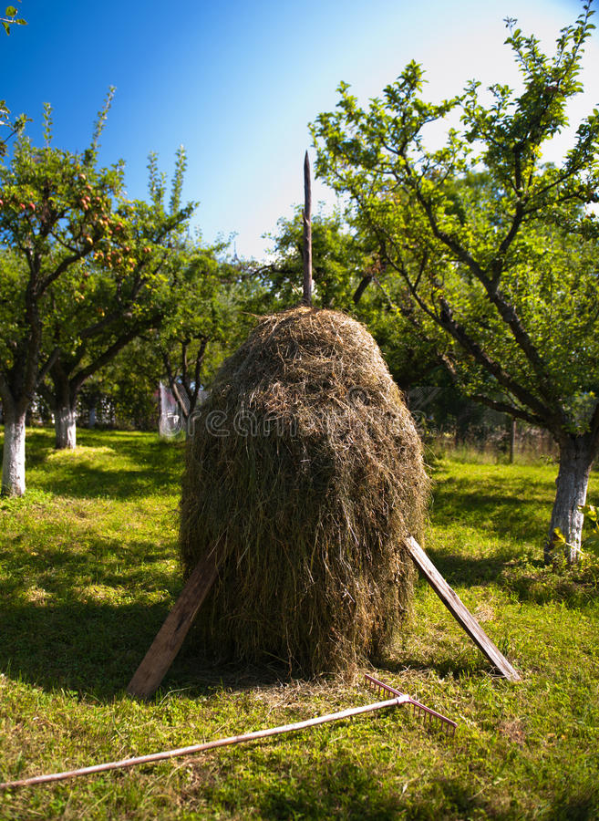 Hay stack royalty free stock image