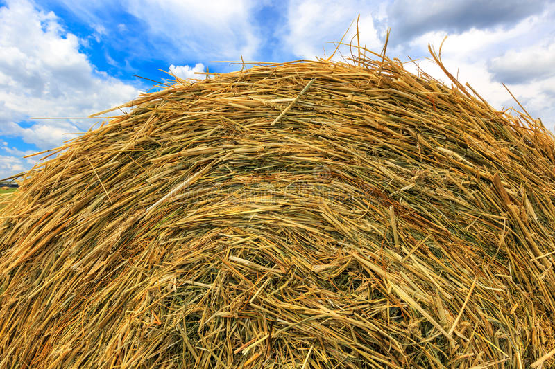 Hay stack close-up on sky background royalty free stock photo
