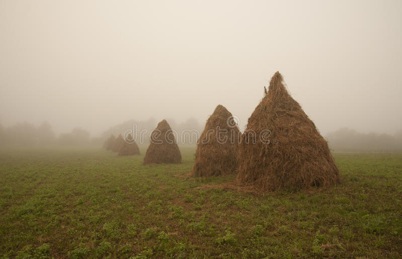 Hay stack and fog royalty free stock image