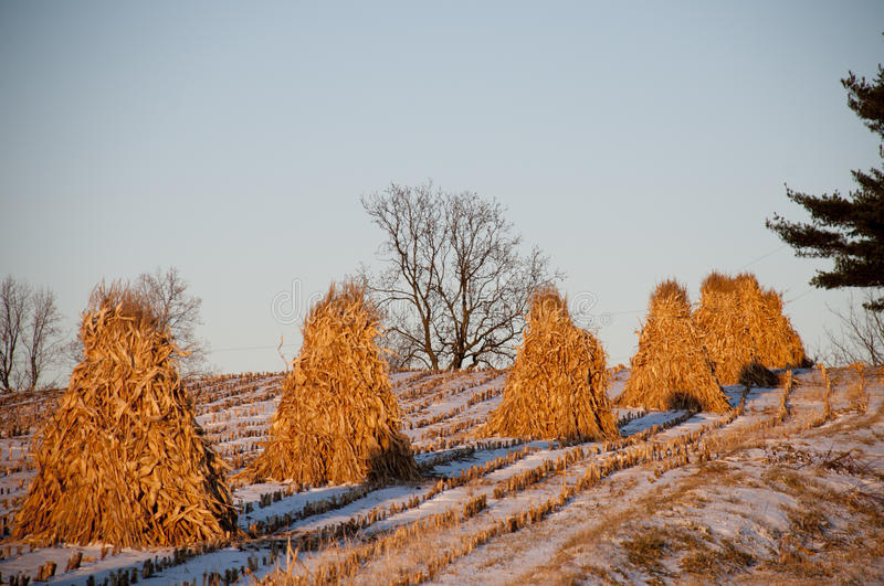 Hay Stacks in Amish Country. With Sunlight and Snow stock photo