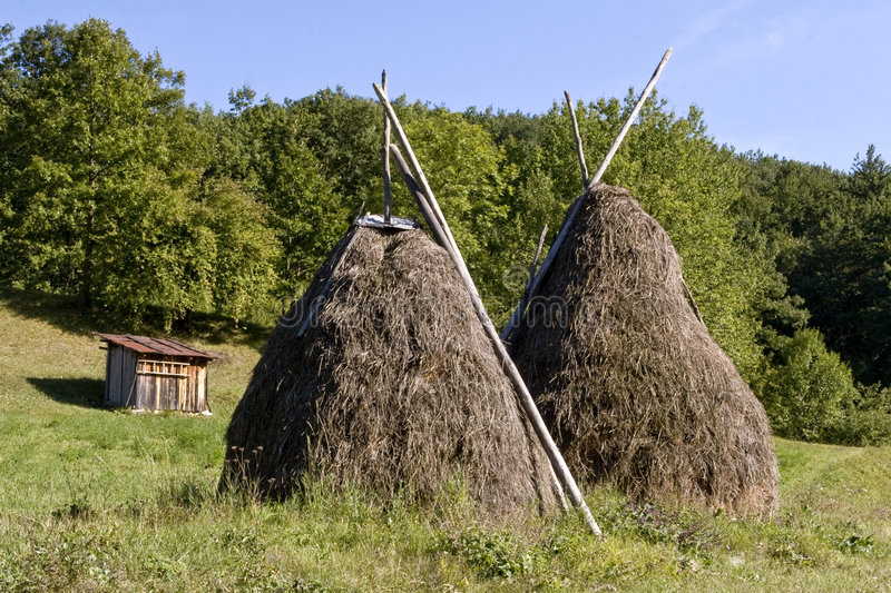 Download Hay Stacks In A Field Royalty Free Stock Photos - Image: 7487018