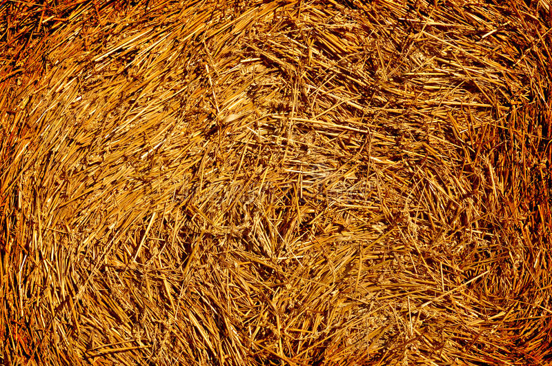Download Hay Texture Background Royalty Free Stock Photography - Image: 20986057