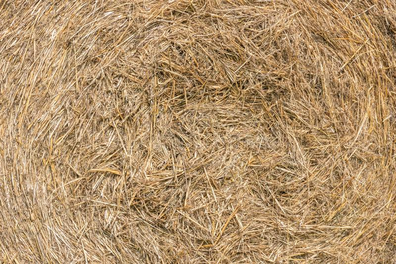 Hay texture stock photos