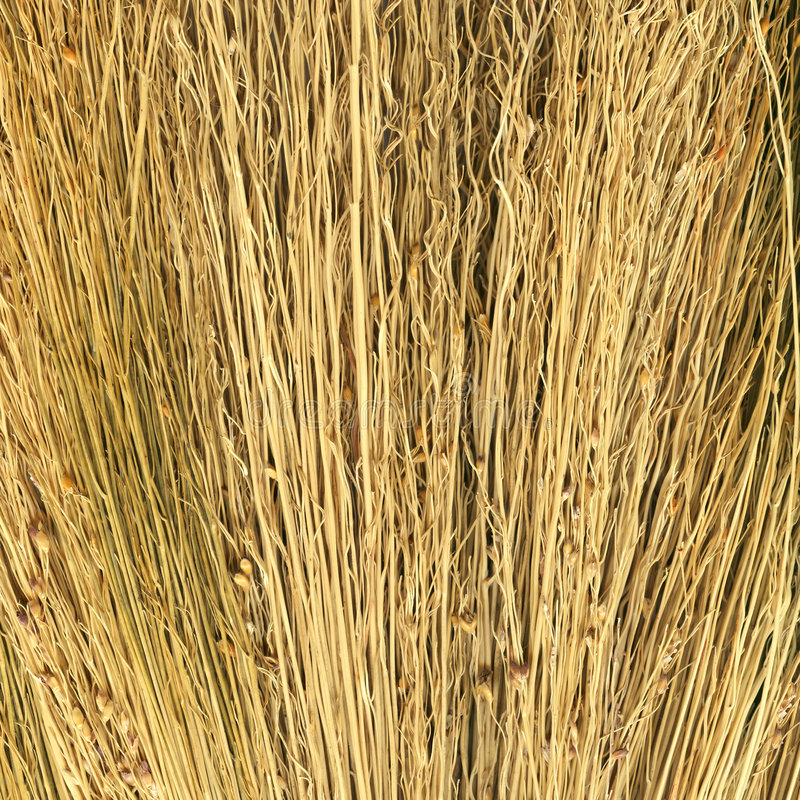 Free Hay Texture To Background Royalty Free Stock Photos - 7889418