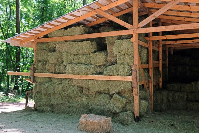 Hay w belach kwadratowych, złożone pod drewnianą szopą obraz stock