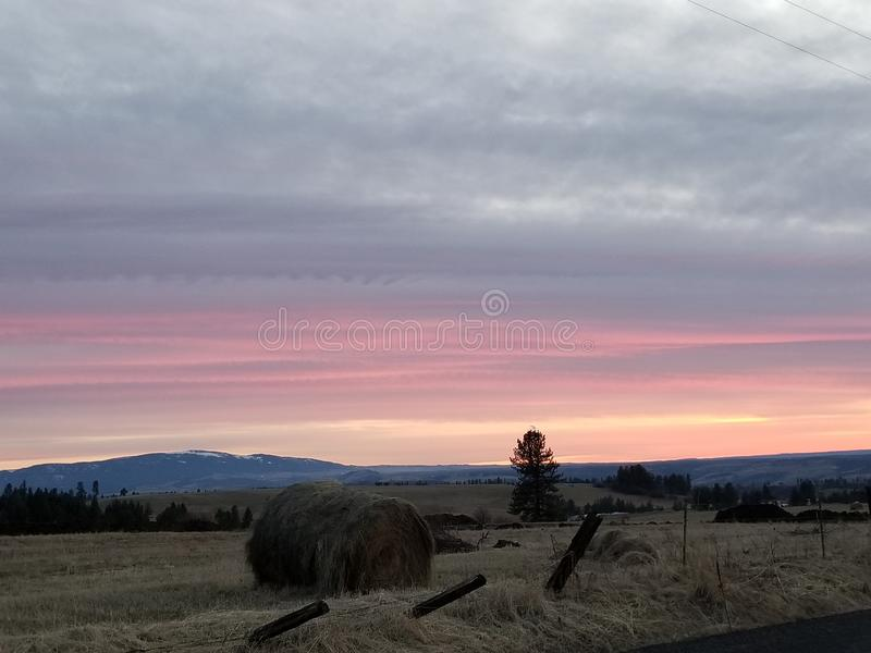 Haybale on a sunset royalty free stock photo