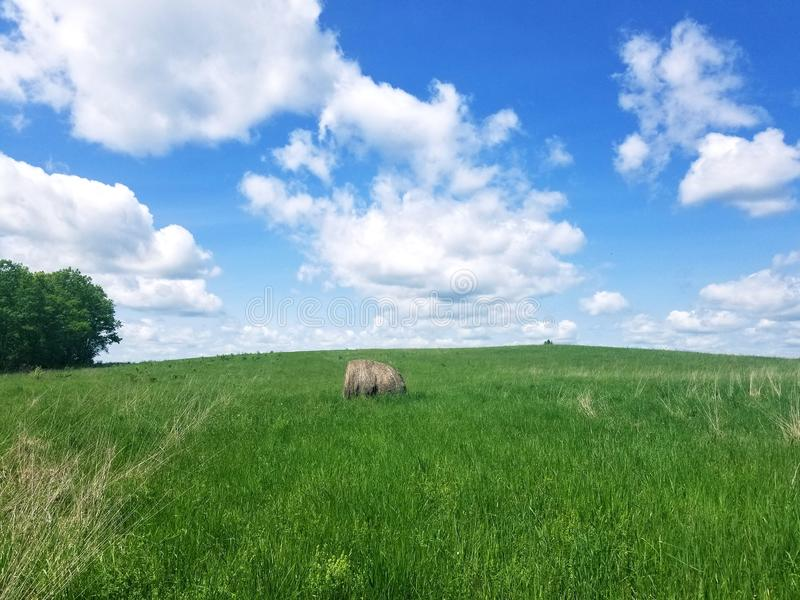 Haybale in a field stock photos