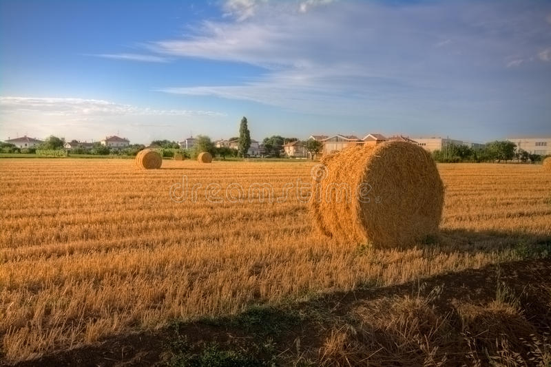 Download Haybale at the sunset stock photo. Image of blue, circle - 12444858