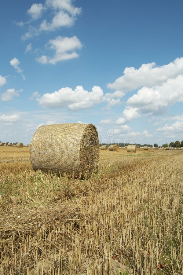 Haycock. End of summer stock photo