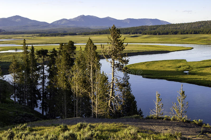 hayden nationalparkdalen yellowstone royaltyfria foton
