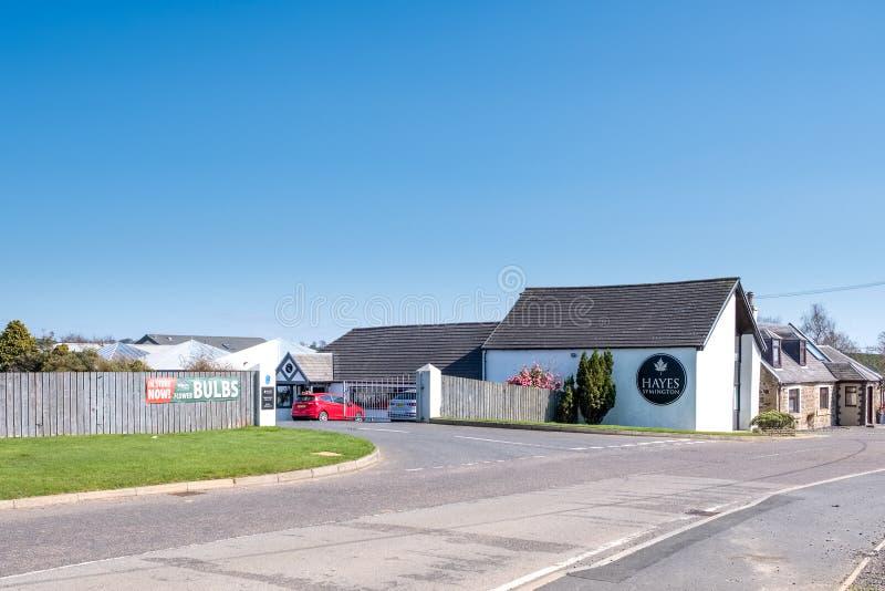 Hayes Garden Centre no Ayrshire sul em Escócia imagem de stock royalty free