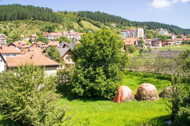 Hayfield στη Nova Varos πόλεων στη δυτική Σερβία στοκ εικόνα