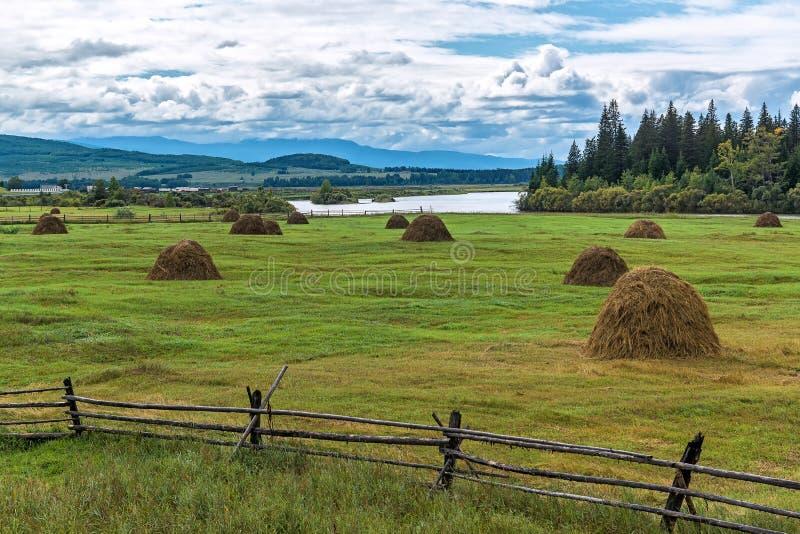 Hayfield in de Tunka-Vallei stock foto