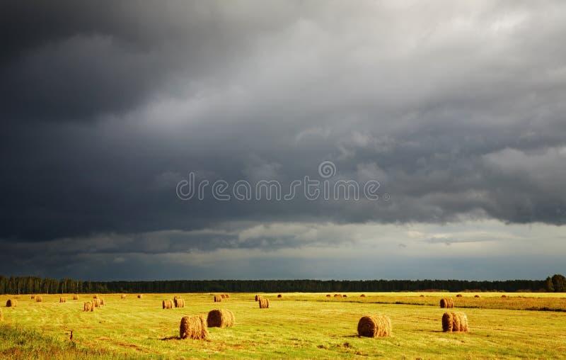Hayfield en onweerswolken royalty-vrije stock afbeelding