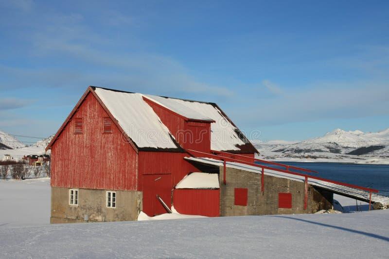Hayloft of lofoten. Traditional hayloft of Lofoten islands, near the famous Haukland beach stock image