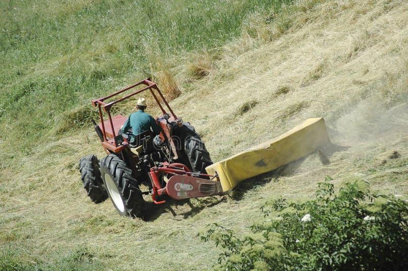 haymaking стоковая фотография rf