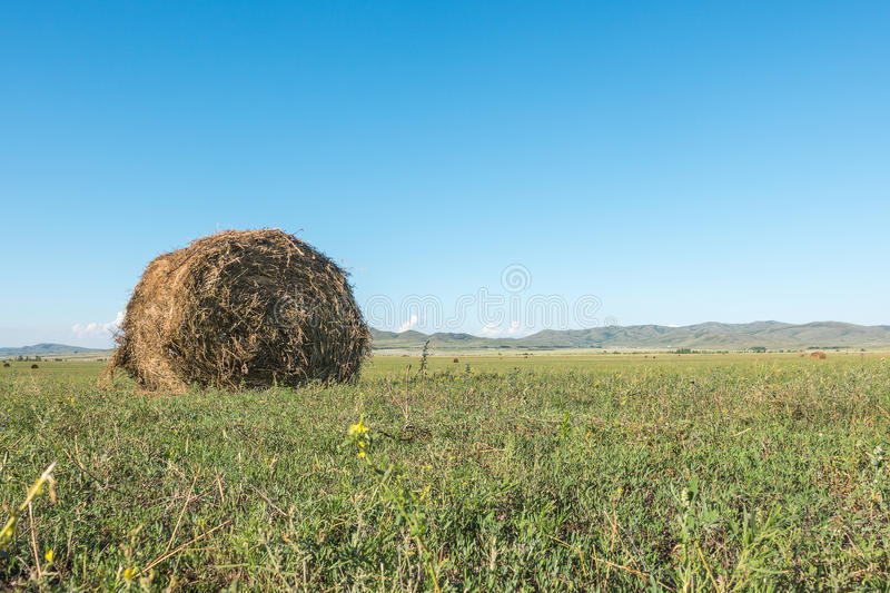 Haymaking meadow with background of mountains. East Kazakhstan Region.  royalty free stock photos