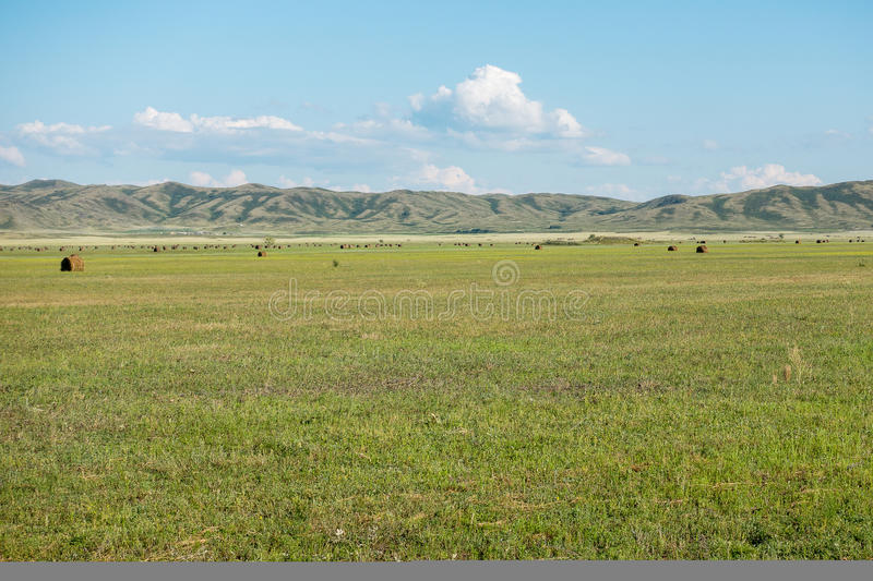 Haymaking meadow with background of mountains. East Kazakhstan Region.  royalty free stock images