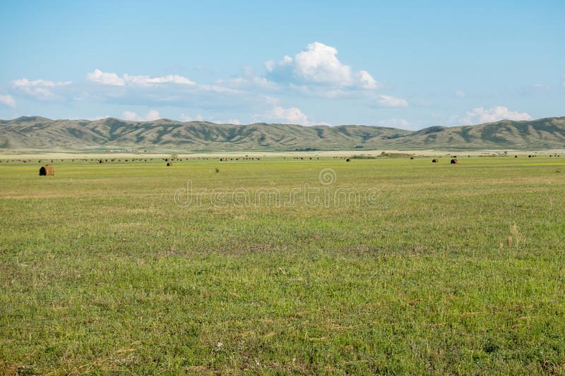 Haymaking meadow with background of mountains. East Kazakhstan Region.  stock photos