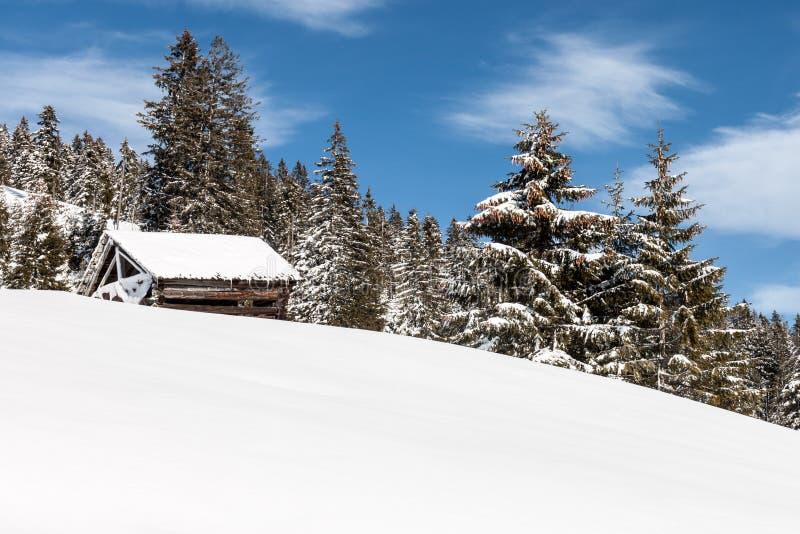Hayrick το χειμώνα στοκ φωτογραφία με δικαίωμα ελεύθερης χρήσης