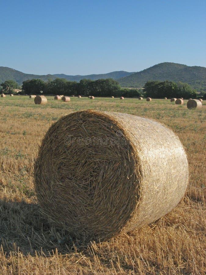 hayrolls стоковая фотография