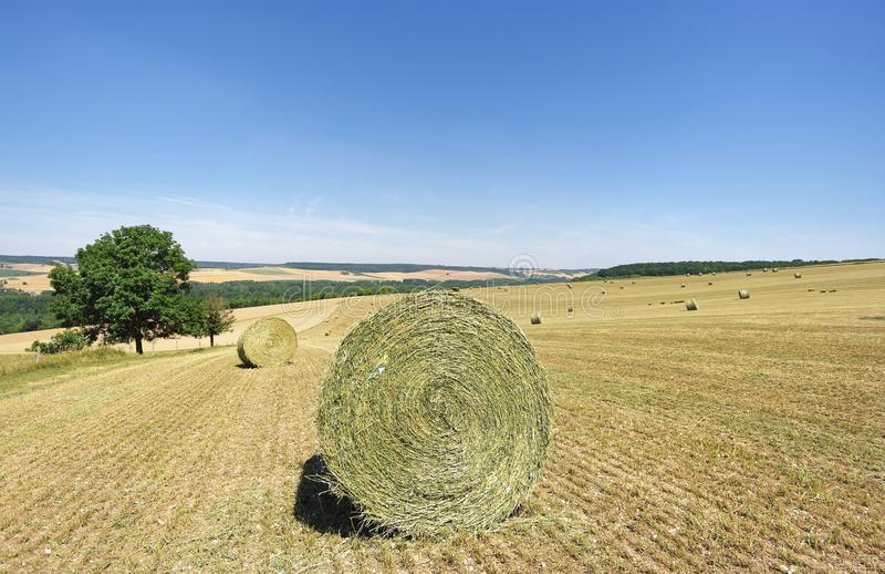 Haysatcks y campo de trigo en la región de ÃŽle de Francia fotos de archivo libres de regalías