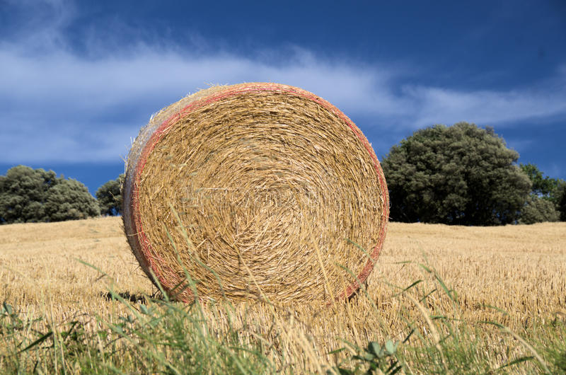 Download The haystack stock image. Image of europe, harvest, industries - 25951749
