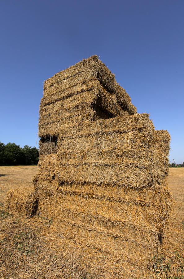 Haystack. Big haystack on the field in the summer in Poland stock image