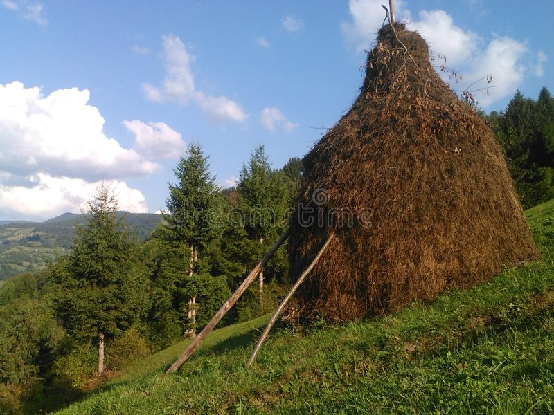haystack стоковое фото rf