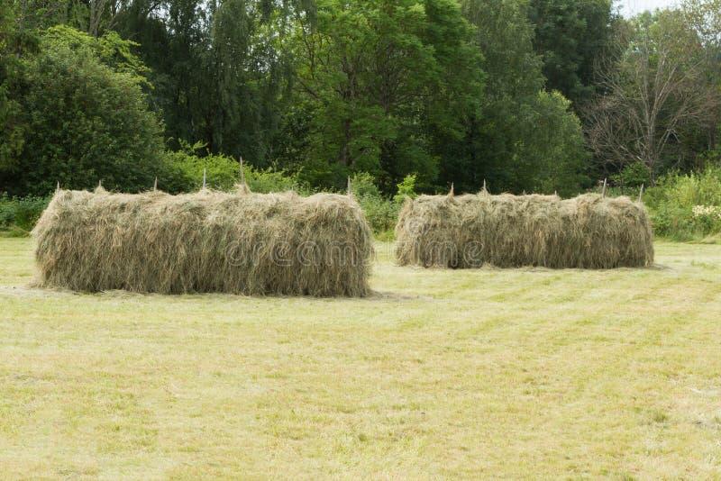 haystack στοκ φωτογραφία με δικαίωμα ελεύθερης χρήσης