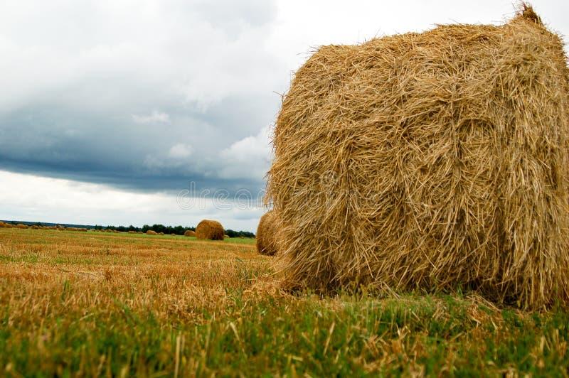 haystack στοκ φωτογραφία