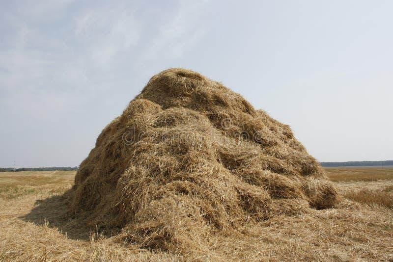 haystack στοκ φωτογραφίες