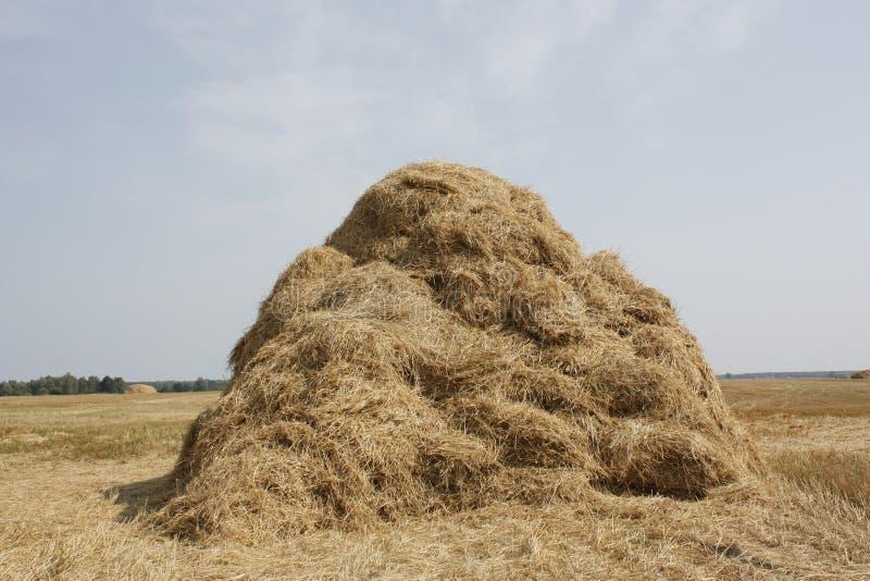haystack στοκ εικόνες με δικαίωμα ελεύθερης χρήσης