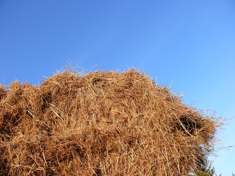 Download Haystack Against Blue Sky Stock Photography - Image: 4677032