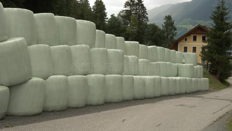 Haystack big bales packaging in plastic. Cow food haystack big bales in row for feeding cows, storage space royalty free stock photography
