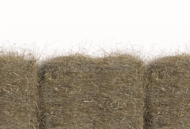 Haystack closeup isolated on white background with copy space. Top view. 3D render of straw. Haystack closeup isolated on white background with copy space. Top royalty free illustration