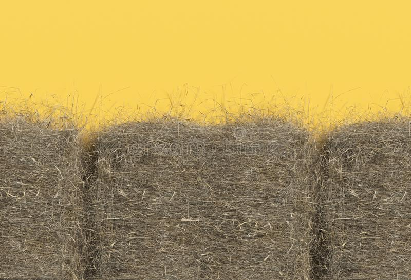 Haystack closeup isolated on yellow background with copy space. Top view. 3D render of straw. Haystack closeup isolated on yellow background with copy space stock illustration