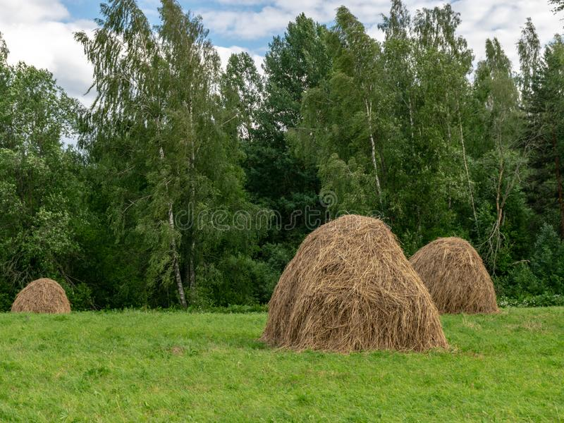 Haystack on the field. stock image