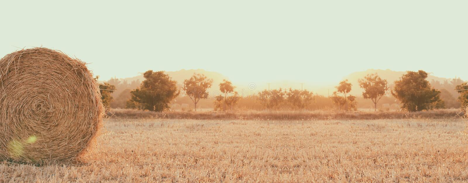 Haystack on the field. Sunset time. Harvest season. Long banner photo. Header format. Calm place. Soft warm sun light royalty free stock image