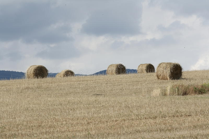 Haystack in french countryside, Pyrenees orientales in France stock image