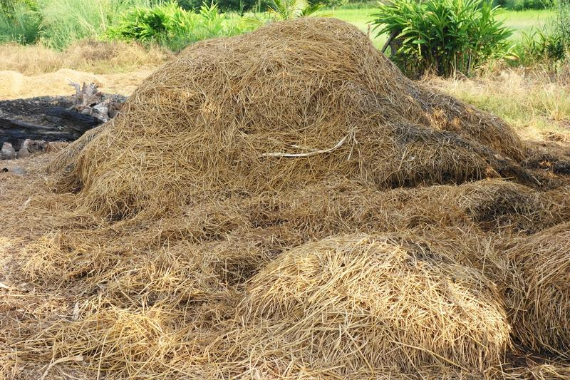 Haystack in the garden royalty free stock image