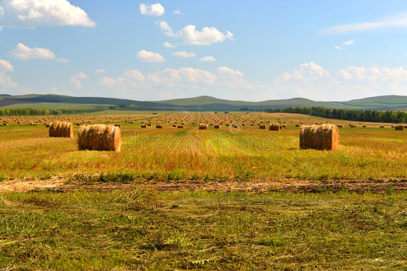 The haystack on the grasslands stock image