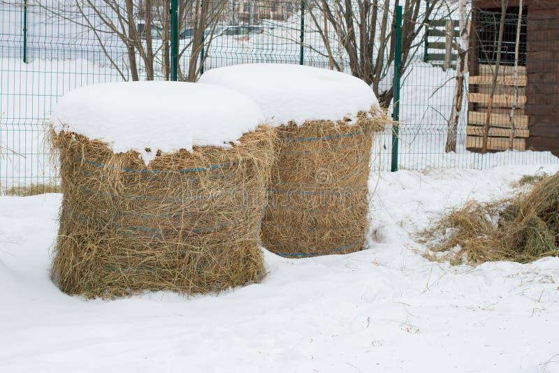 Haystack nella neve d'inverno immagine stock libera da diritti