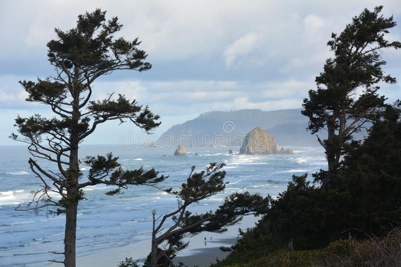 Haystack Rock framed by trees on the Oregon Coast stock photo