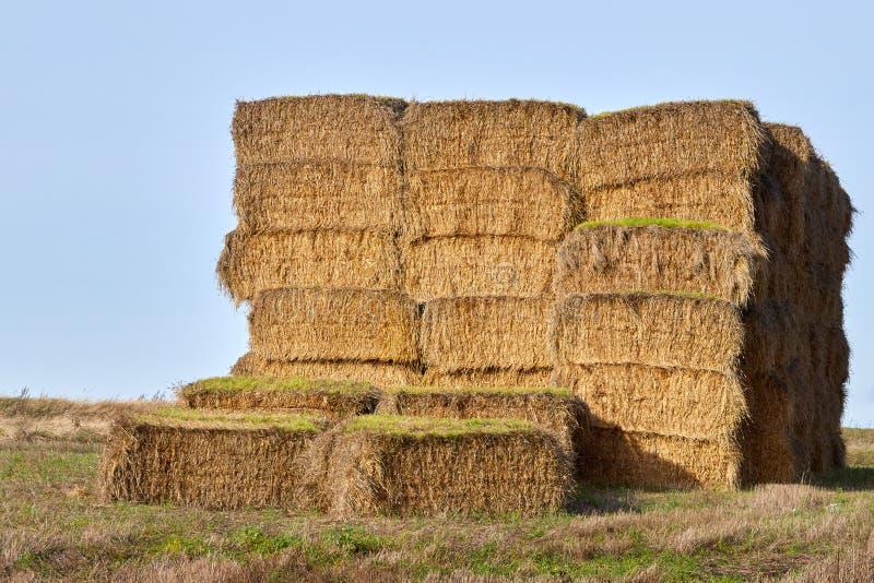 Haystack su un campo in autunno fotografie stock