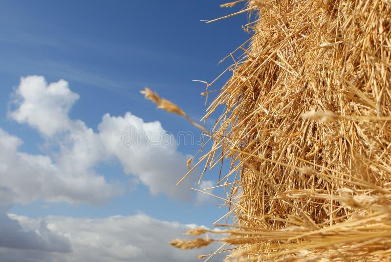 Haystack in Summer stock photos