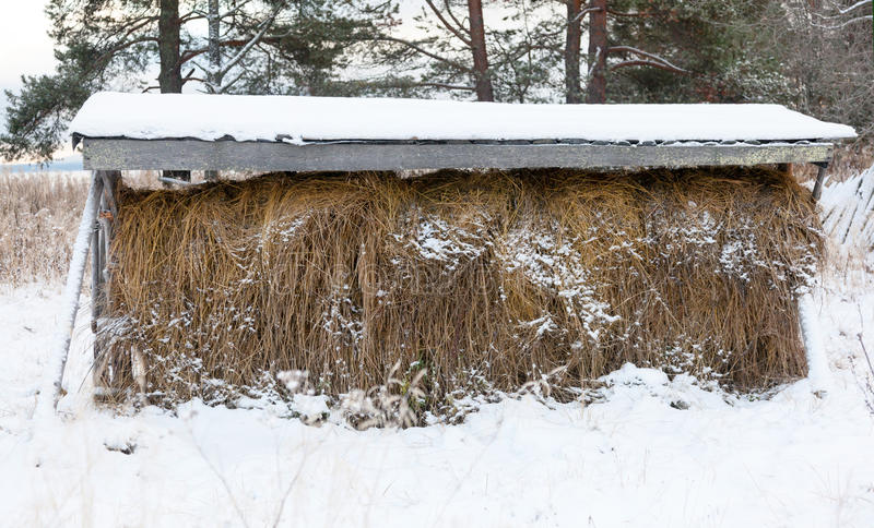 Haystack on the veshalah royalty free stock images