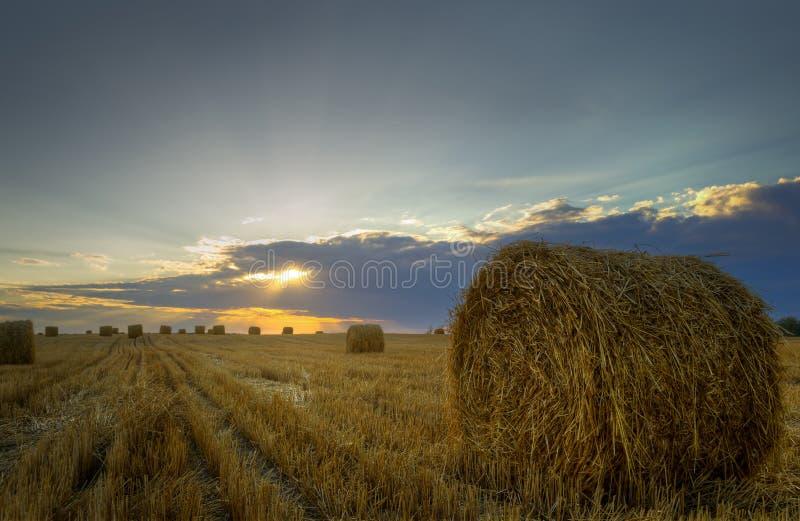 haystacks Заход солнца на поле стоковая фотография rf
