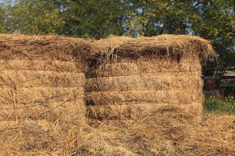 Download Haystacks stock image. Image of countryside, haystack - 12344723