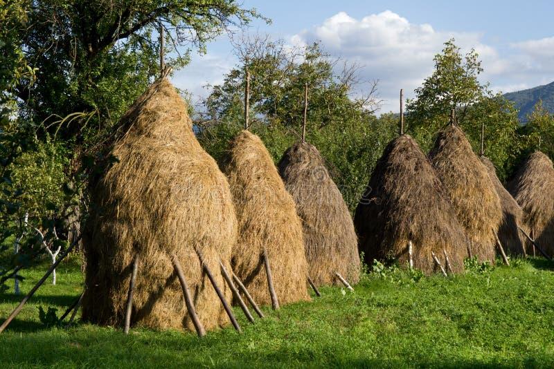 haystacks стоковые изображения rf